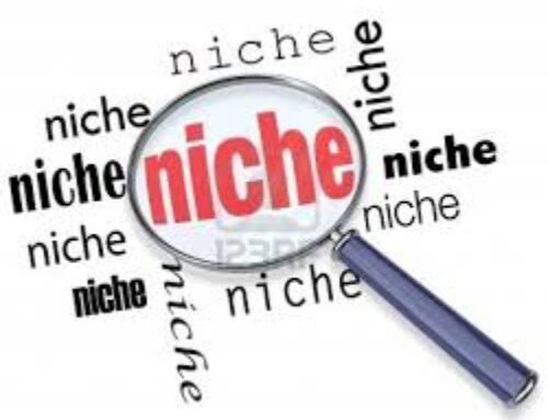 The Truth About Niches